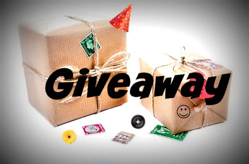 giveaway at EclecticEvelyn.com