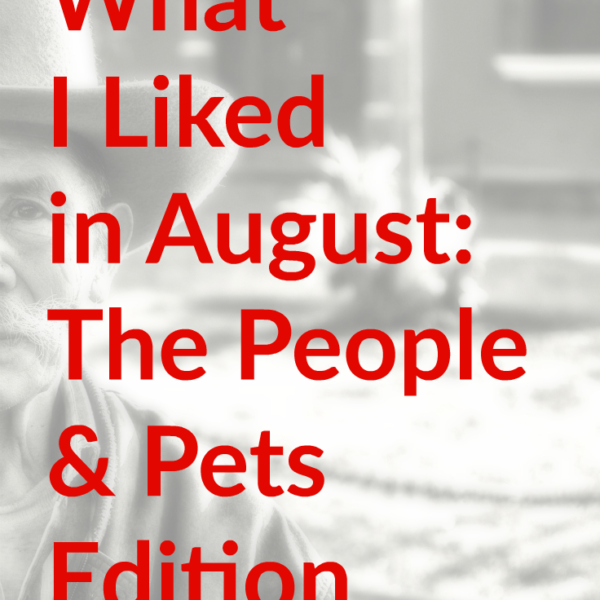 What I Liked in August EclecticEvelyn.com