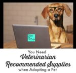 You Need Veterinarian Recommended Supplies when Adopting a Pet