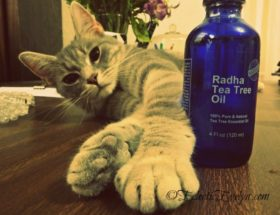 Review Radha Tea Tree Oil EclecticEvelyn.com