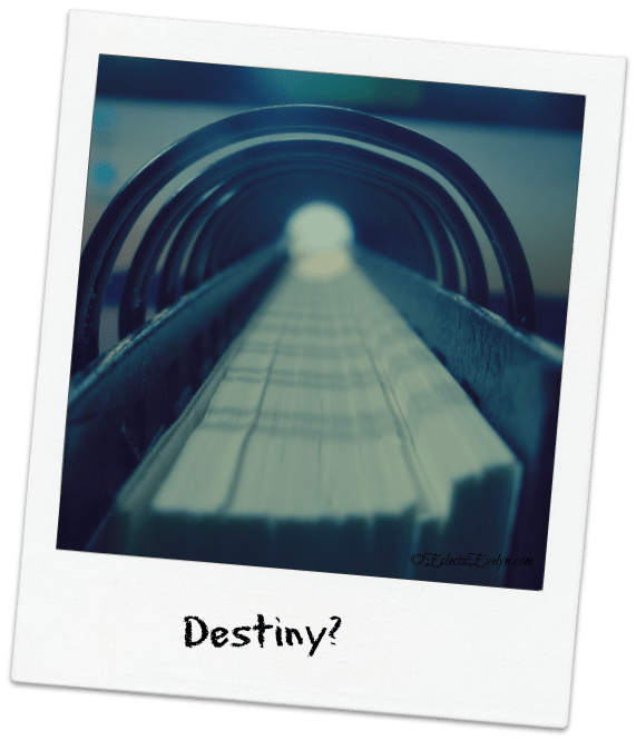 Destiny EclecticEvelyn.com
