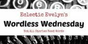 Eclectic Evelyn's #WordlessWednesday EclecticEvelyn.com