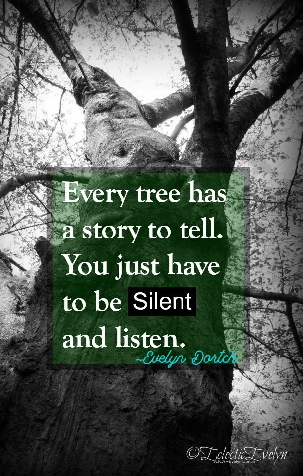 Dame Judi Dench and I Share a Passion for Trees EclecticEvelyn.com